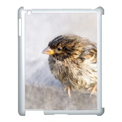 Funny Wet Sparrow Bird Apple Ipad 3/4 Case (white) by FunnyCow