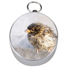 Funny Wet Sparrow Bird Silver Compasses by FunnyCow