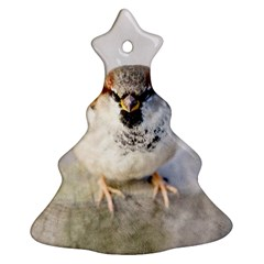Do Not Mess With Sparrows Ornament (christmas Tree)  by FunnyCow