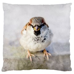 Do Not Mess With Sparrows Large Cushion Case (two Sides) by FunnyCow