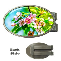 Crab Apple Flowers Money Clips (oval)  by FunnyCow