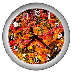 Orange, Yellow Cotoneaster Leaves In Autumn Wall Clock (silver) by FunnyCow