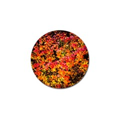 Orange, Yellow Cotoneaster Leaves In Autumn Golf Ball Marker (10 Pack) by FunnyCow