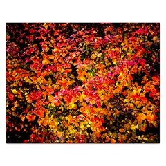 Orange, Yellow Cotoneaster Leaves In Autumn Rectangular Jigsaw Puzzl by FunnyCow