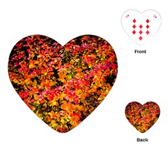 Orange, Yellow Cotoneaster Leaves In Autumn Playing Cards (heart)  by FunnyCow
