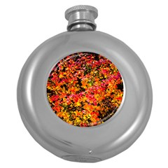 Orange, Yellow Cotoneaster Leaves In Autumn Round Hip Flask (5 Oz) by FunnyCow