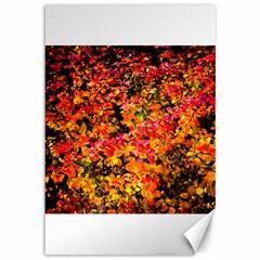 Orange, Yellow Cotoneaster Leaves In Autumn Canvas 12  X 18   by FunnyCow