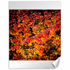 Orange, Yellow Cotoneaster Leaves In Autumn Canvas 18  X 24   by FunnyCow