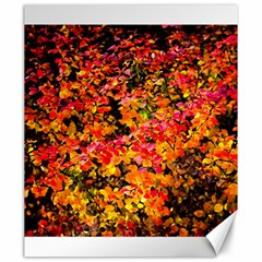 Orange, Yellow Cotoneaster Leaves In Autumn Canvas 20  X 24   by FunnyCow