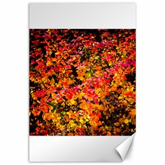 Orange, Yellow Cotoneaster Leaves In Autumn Canvas 24  X 36  by FunnyCow