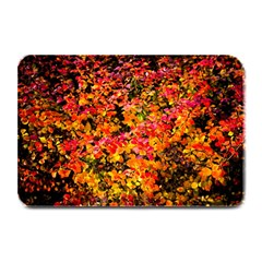 Orange, Yellow Cotoneaster Leaves In Autumn Plate Mats by FunnyCow