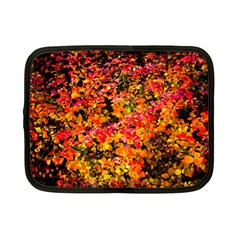 Orange, Yellow Cotoneaster Leaves In Autumn Netbook Case (small)  by FunnyCow