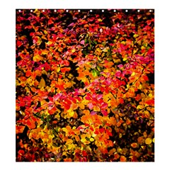 Orange, Yellow Cotoneaster Leaves In Autumn Shower Curtain 66  X 72  (large)  by FunnyCow