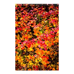 Orange, Yellow Cotoneaster Leaves In Autumn Shower Curtain 48  X 72  (small)  by FunnyCow