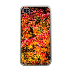 Orange, Yellow Cotoneaster Leaves In Autumn Apple Iphone 4 Case (clear) by FunnyCow