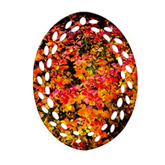Orange, Yellow Cotoneaster Leaves In Autumn Oval Filigree Ornament (two Sides) by FunnyCow