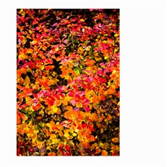 Orange, Yellow Cotoneaster Leaves In Autumn Large Garden Flag (two Sides) by FunnyCow