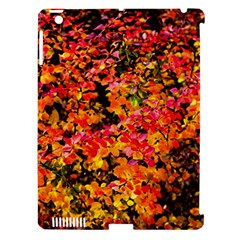 Orange, Yellow Cotoneaster Leaves In Autumn Apple Ipad 3/4 Hardshell Case (compatible With Smart Cover) by FunnyCow