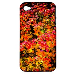 Orange, Yellow Cotoneaster Leaves In Autumn Apple Iphone 4/4s Hardshell Case (pc+silicone) by FunnyCow