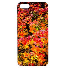 Orange, Yellow Cotoneaster Leaves In Autumn Apple Iphone 5 Hardshell Case With Stand by FunnyCow