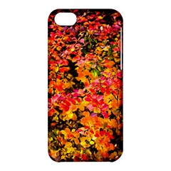 Orange, Yellow Cotoneaster Leaves In Autumn Apple Iphone 5c Hardshell Case by FunnyCow