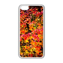 Orange, Yellow Cotoneaster Leaves In Autumn Apple Iphone 5c Seamless Case (white) by FunnyCow