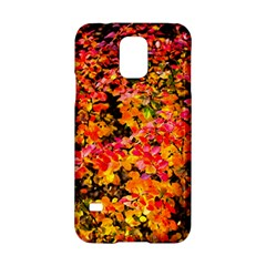 Orange, Yellow Cotoneaster Leaves In Autumn Samsung Galaxy S5 Hardshell Case  by FunnyCow
