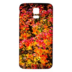 Orange, Yellow Cotoneaster Leaves In Autumn Samsung Galaxy S5 Back Case (white) by FunnyCow