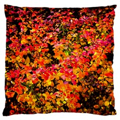 Orange, Yellow Cotoneaster Leaves In Autumn Standard Flano Cushion Case (one Side) by FunnyCow