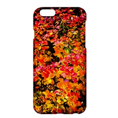 Orange, Yellow Cotoneaster Leaves In Autumn Apple Iphone 6 Plus/6s Plus Hardshell Case by FunnyCow