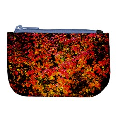 Orange, Yellow Cotoneaster Leaves In Autumn Large Coin Purse
