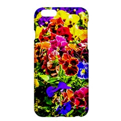 Viola Tricolor Flowers Apple Iphone 6 Plus/6s Plus Hardshell Case by FunnyCow