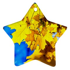 Yellow Maple Leaves Ornament (star) by FunnyCow