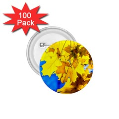 Yellow Maple Leaves 1 75  Buttons (100 Pack)  by FunnyCow