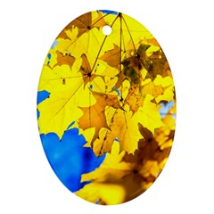 Yellow Maple Leaves Oval Ornament (two Sides) by FunnyCow