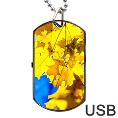 Yellow Maple Leaves Dog Tag Usb Flash (one Side) by FunnyCow