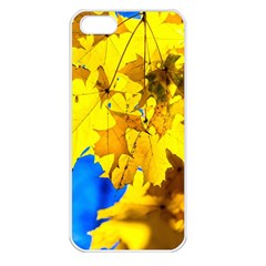 Yellow Maple Leaves Apple Iphone 5 Seamless Case (white) by FunnyCow