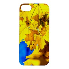 Yellow Maple Leaves Apple Iphone 5s/ Se Hardshell Case by FunnyCow
