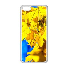 Yellow Maple Leaves Apple Iphone 5c Seamless Case (white) by FunnyCow