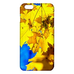 Yellow Maple Leaves Iphone 6 Plus/6s Plus Tpu Case by FunnyCow