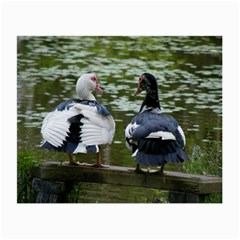 Muscovy Ducks At The Pond Small Glasses Cloth by IIPhotographyAndDesigns