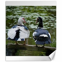Muscovy Ducks At The Pond Canvas 20  X 24   by IIPhotographyAndDesigns