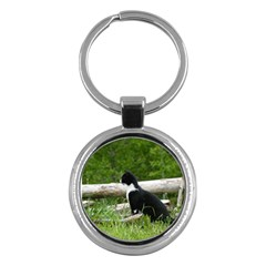 Farm Cat Key Chains (round)  by IIPhotographyAndDesigns
