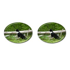 Farm Cat Cufflinks (oval) by IIPhotographyAndDesigns