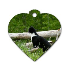 Farm Cat Dog Tag Heart (two Sides) by IIPhotographyAndDesigns