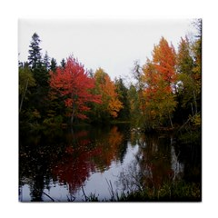 Autumn Pond Tile Coasters by IIPhotographyAndDesigns