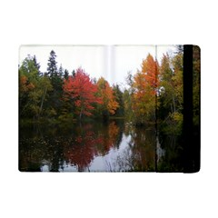 Autumn Pond Ipad Mini 2 Flip Cases by IIPhotographyAndDesigns