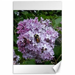 Lilac Bumble Bee Canvas 24  X 36  by IIPhotographyAndDesigns
