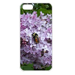 Lilac Bumble Bee Apple Iphone 5 Seamless Case (white) by IIPhotographyAndDesigns