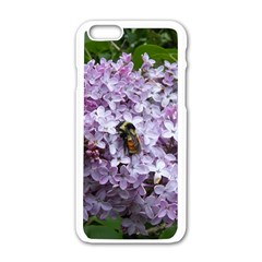 Lilac Bumble Bee Apple Iphone 6/6s White Enamel Case by IIPhotographyAndDesigns
